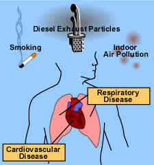 airpollutionandlungs.jpg
