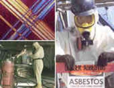 Asbestos Toxic Tort