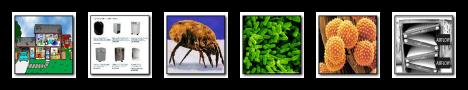 home air purifier blog image 2.