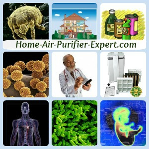 Pictorial Sitemap Of All Home Air Purifier Links To Expert