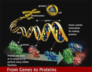 nanotechnology-image.jpg